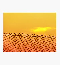 Fence Photographic Print