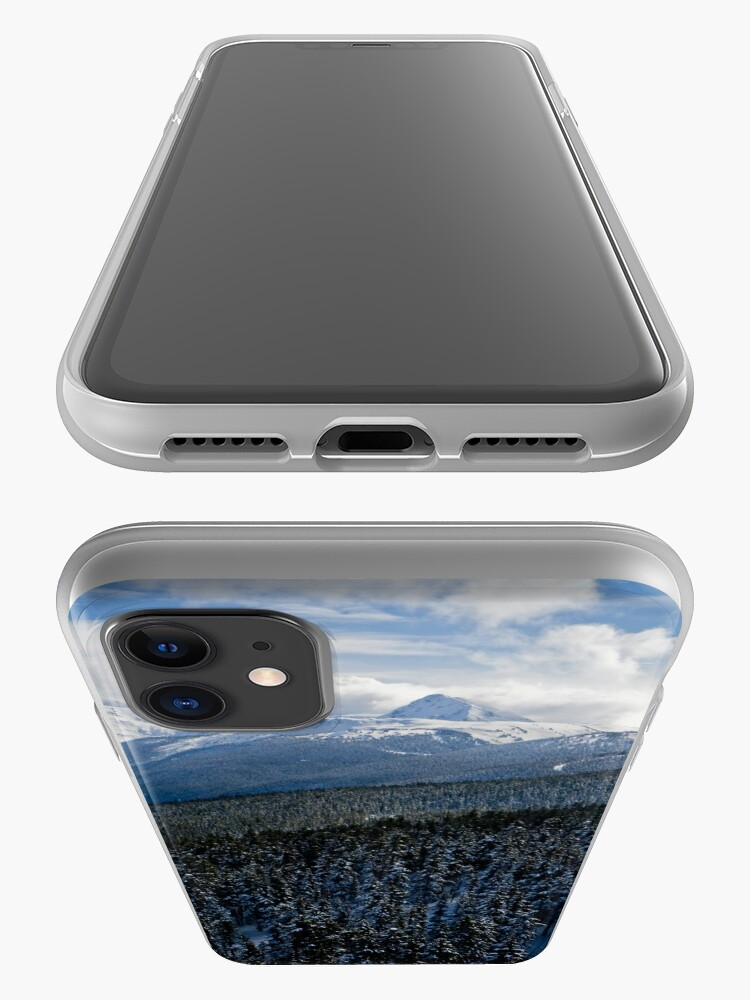 Alternate view of View from Whistler Mountain iPhone Case & Cover