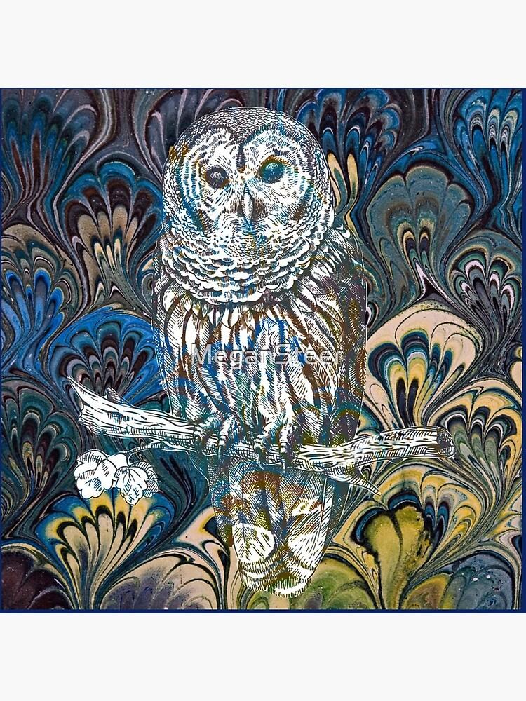 Owl in Blue by MeganSteer
