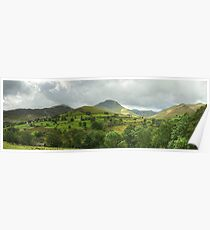 Newlands Skyline Poster