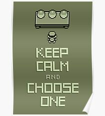 Keep Calm and Choose One Poster