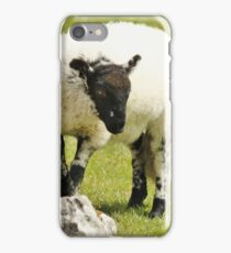 Yorkshire Lamb iPhone Case/Skin