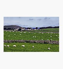 Rowter Farm and Mam Tor Photographic Print