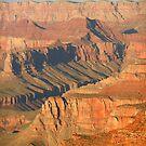 Grand Canyon South Rim, Arizona by Joni  Rae