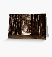 Mackinac Island Path Greeting Card