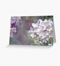 Vintage Pink Hydrangea Greeting Card