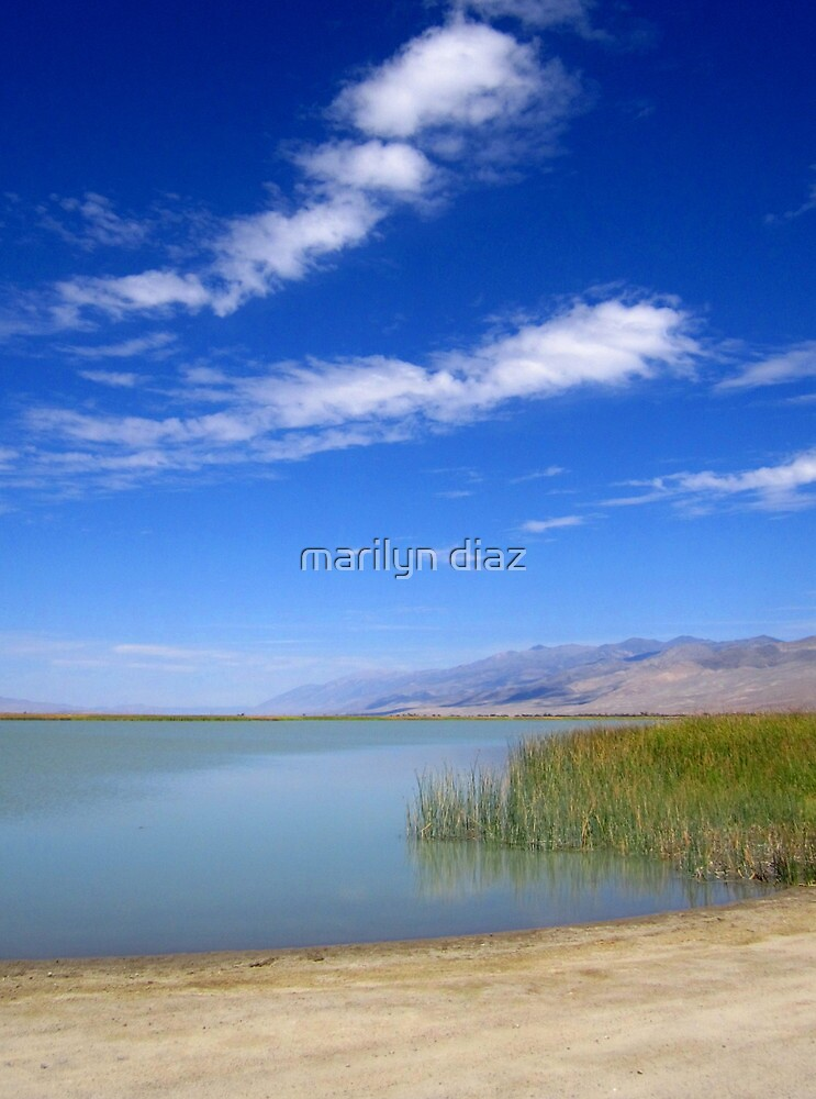 Simple And Scenic by marilyn diaz