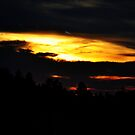 Fire Sky by Amy Pehringer