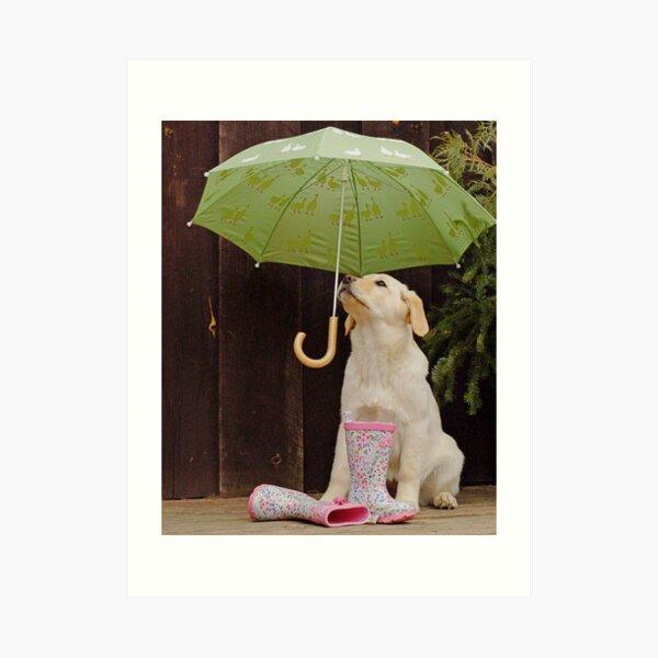 They said rain today! Art Print