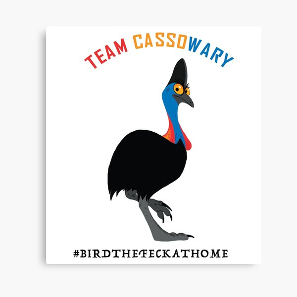 Cassowary Canvas Prints | Redbubble
