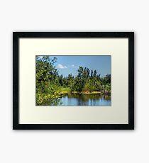 The lake at Paradise Island in Nassau, The Bahamas Framed Print