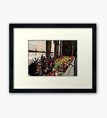 FLOWER BORDER . Framed Print