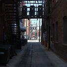 Alley by Larry Hartshorn