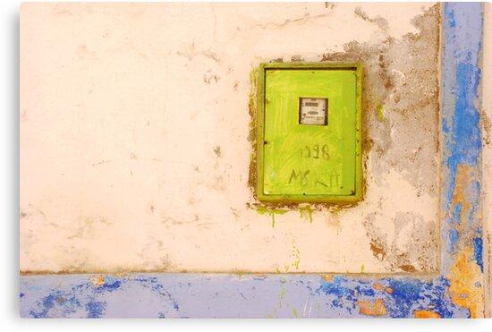 Lime by Celia Strainge