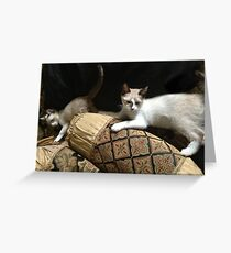 RENAISSANCE CATS Greeting Card