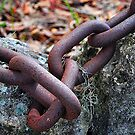 Chain Links by joevoz