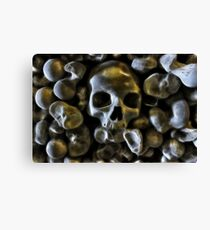 Good Bone Structure Canvas Print