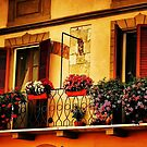 A Balcony In Pisa by Barbara  Brown