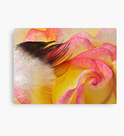 Touch a Rose Metal Print