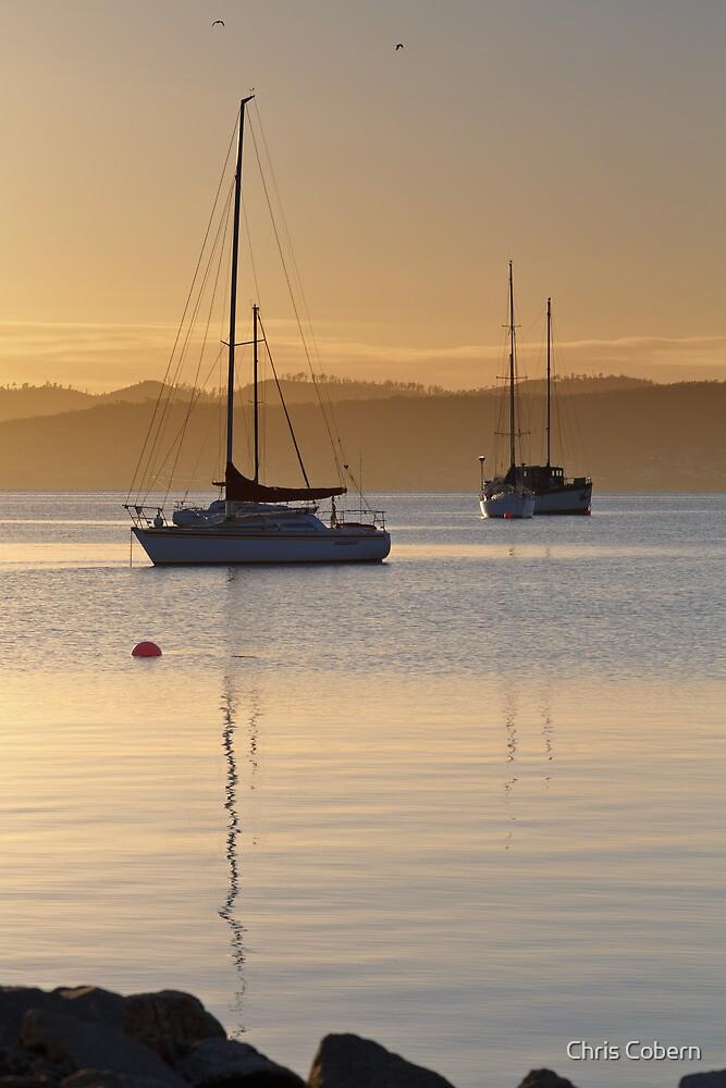 Sunrise at Marieville Esplanade, Sandy Bay, Tasmania #2 by Chris Cobern