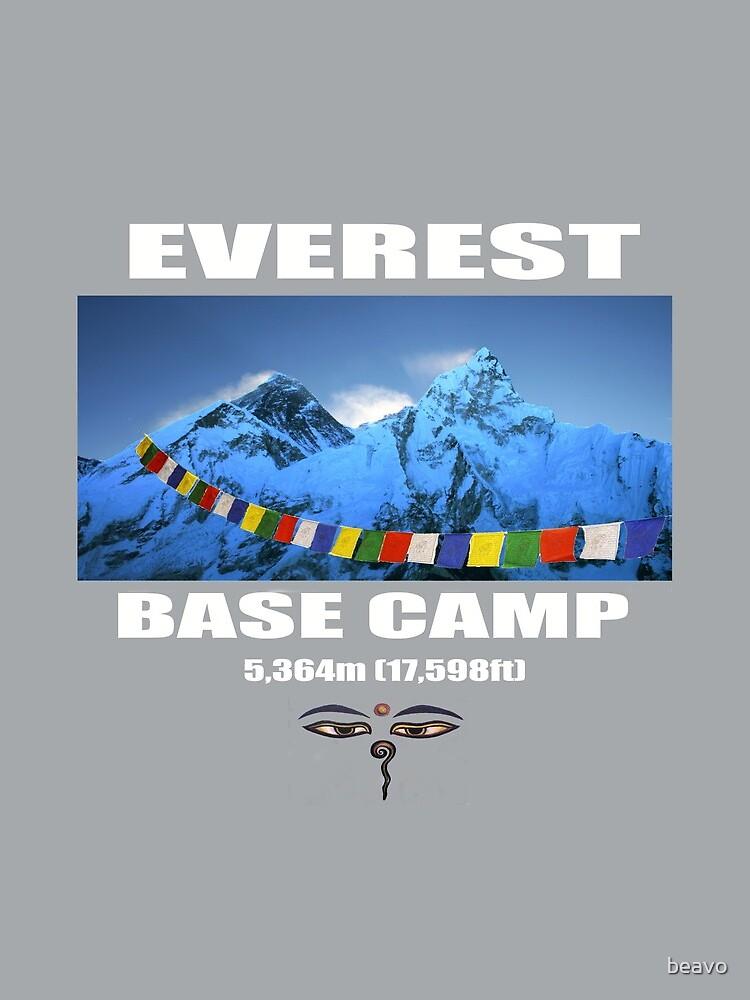Everest Base Camp by beavo