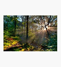 good morning Photographic Print