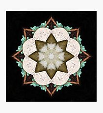 Natural Abstract Symmetry Photographic Print