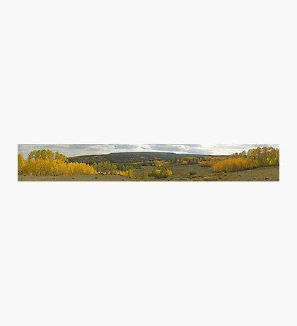 Boulder Mountain, Utah Photographic Print