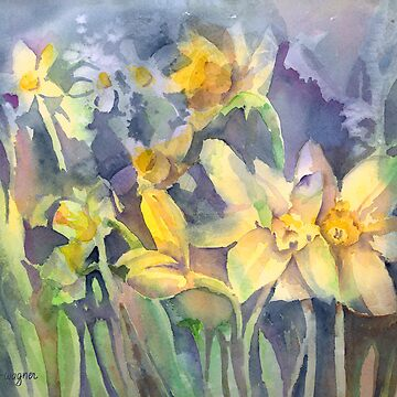 Daffodils by awagner