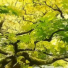 Green Goddess by Marilyn Cornwell