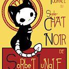Skele Chat Noir by Deanne George