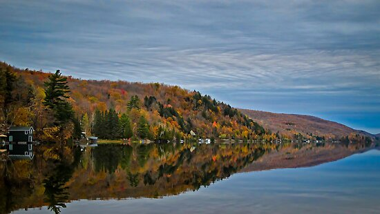 Conifer and Fall Colored Trees Mirrored on Blue Water by Chantal PhotoPix