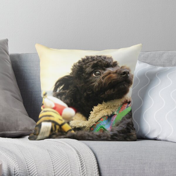 Black Toy Poodle Cute Throw Pillow