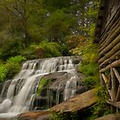 Mill Shoals Waterfall 2 by Laura  Knight
