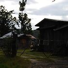 Rugged Old Farm by cactus82