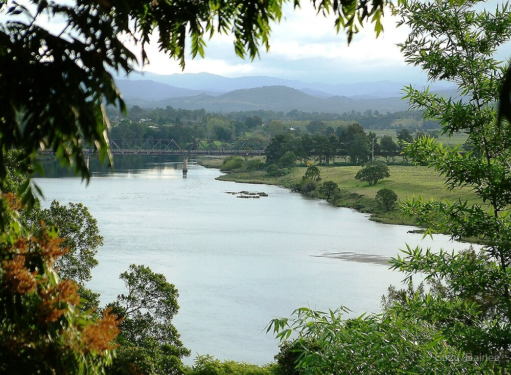 Macleay River  by Suzy  Baines
