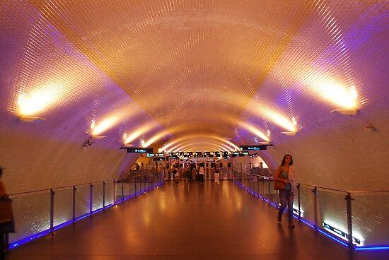 Baixa Chiado Metro Station by babibell