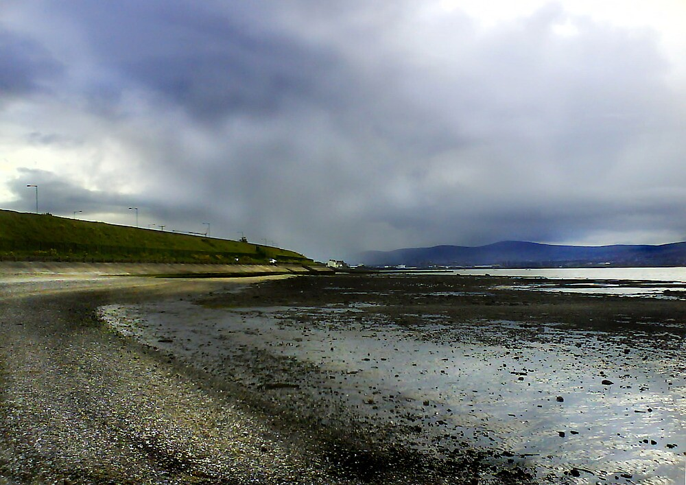Holywood Beach, Co. Down (2) by holden
