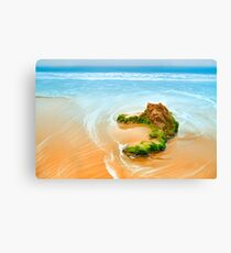 Beach Rock Canvas Print
