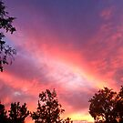September Sky by Anne  McGinn