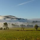 Dawn Mist 2 by jon  daly
