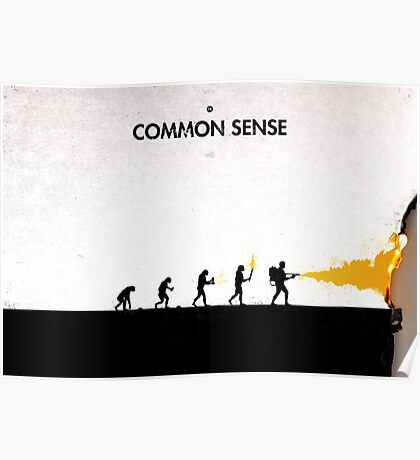 99 Steps of Progress - Common sense Poster