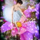 Fairy Dust by Diane Johnson-Mosley