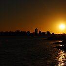 Swan River - Perth by cactus82