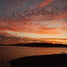 Twilight Sky Camping at Logue Brook Dam - Western Australia by cactus82