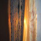 Vivid Sunset by cactus82