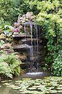 Garden Waterfall by Elaine Teague