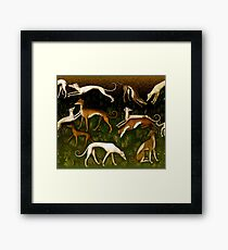 Greyhounds Framed Print