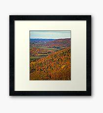Canopy of Orange Leaves in the Ottawa Valley Framed Print