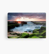 Turimetta Colour Metal Print